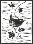 Wren woodcut