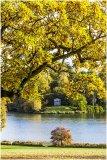 Autumn 50
