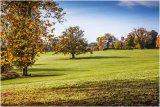 Autumn 51