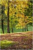 Autumn 68