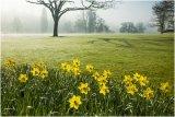 Spring 03