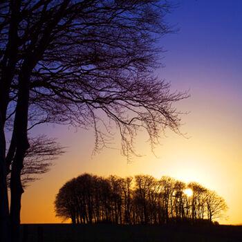 WL_01 Sunset Blues