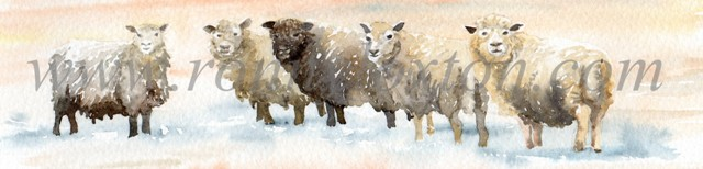 110 Five sheep in snow