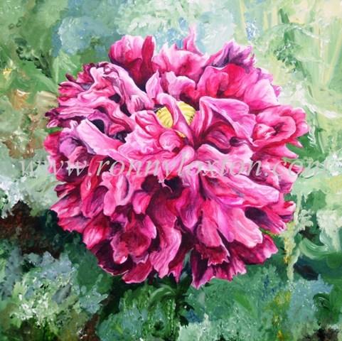 124 Ornamental Poppy