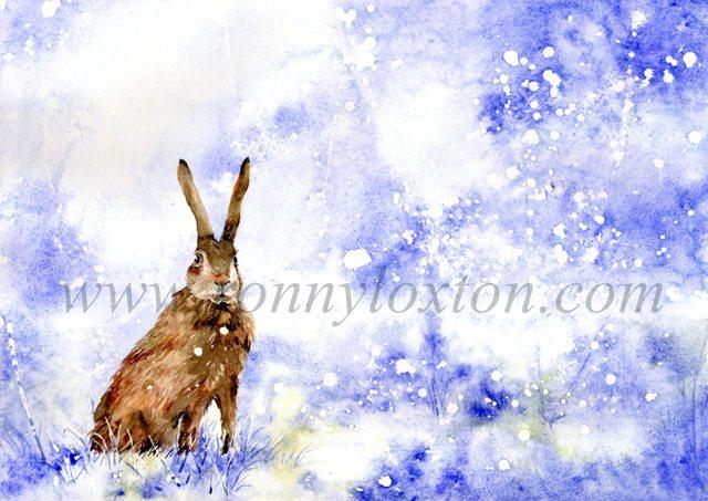 331 Hare
