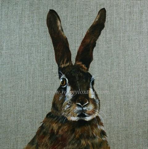 336 Hare