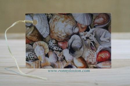 GT4 Shells