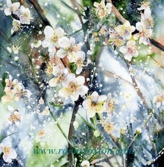 PCPQ1 Blossom 1