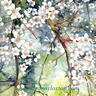 PCQ2 Blossom 2