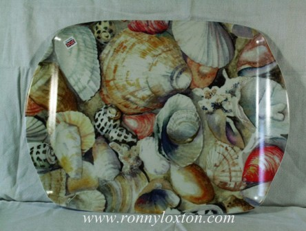 TM4 Shells