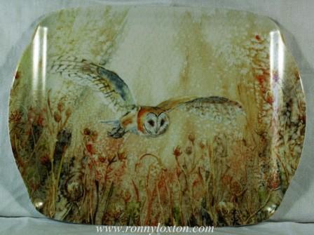 TM9 Barn Owl