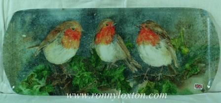TSAND6 Three Robins