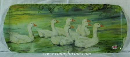 TSAND8 Geese