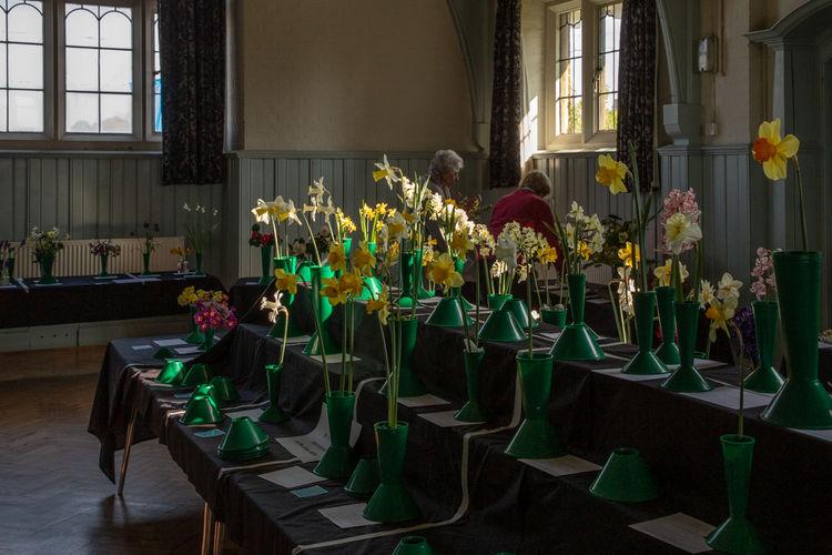 ticehurst gardeners iii