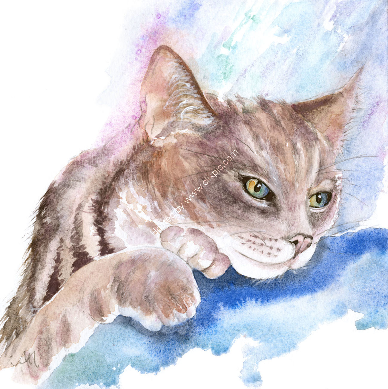 Pausing Cat