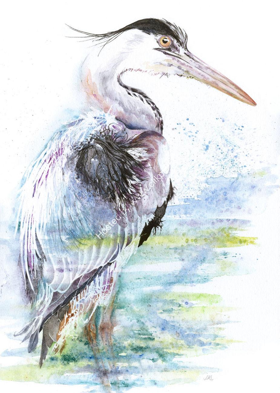 Water Wader