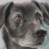 Max & Pippa : pastel (commission)