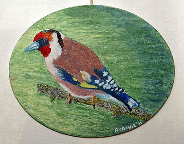 bird, oil pastel on board, 20cm x 25cm