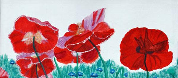 poppies, watercolour, 11cm x 23cm