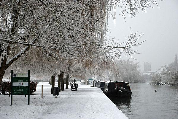 Winter Medows