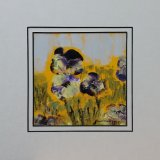 SOLD - WILD PANSIES [10x10in] £100