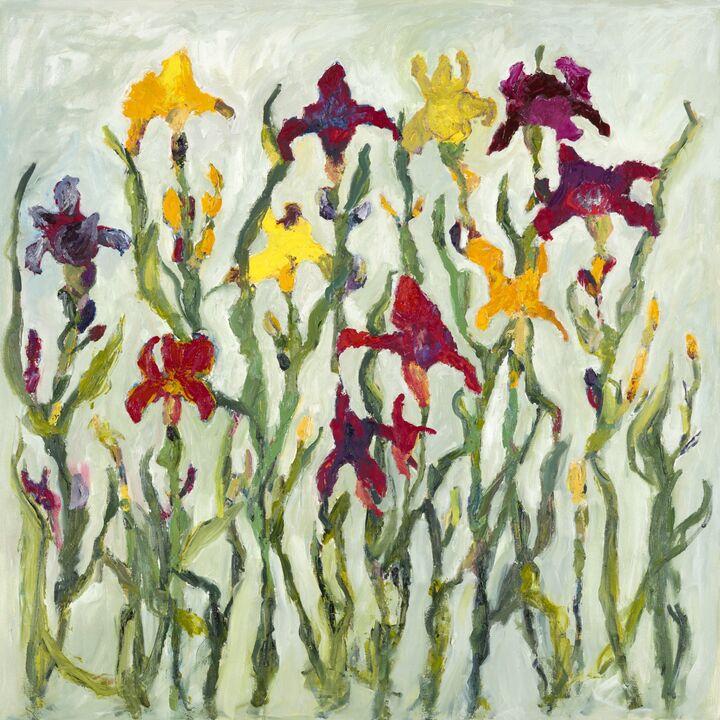 Iris  (sold) 1 oil on canvas 100 x100 cms +frame