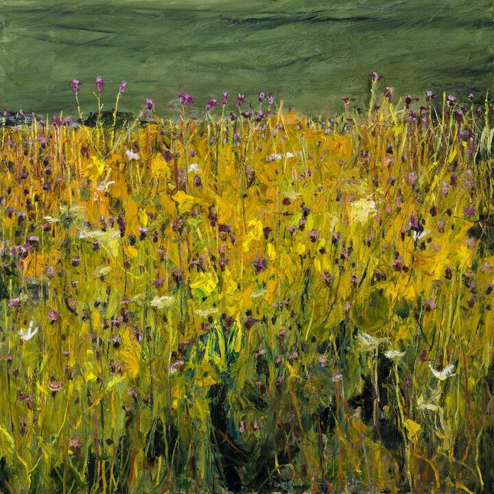 Meadow oil on canvas 1000x100cms + frame