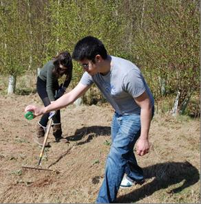 Students sowing wildflower seeds and raking them in.