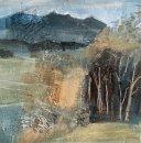 Snowgums, Tweed Valley