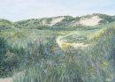 Ainsdale Dunes Trail