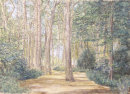 Formby Pinewoods in Pastel A