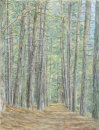 Formby Pinewoods in Pastel B