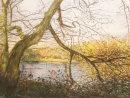 Hollow Ponds, Autumn