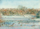 Hollow Ponds Frozen and Waterfowl B