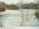 Hollow Ponds Frozen. and Waterfowl  A