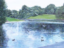 Boating Lake, Sefton Park