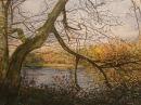 Hollow Pond, Walthamstow in Autumn (2008)30.5cm x 40.6cm (A3)