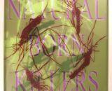 Natural Born Killers 5P
