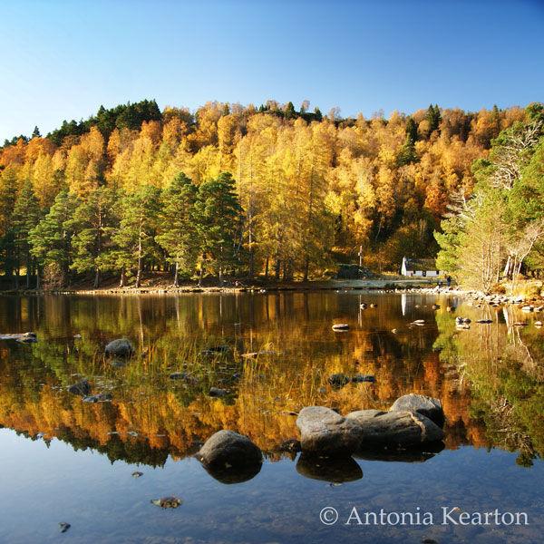 Autumn, Loch an Eilein