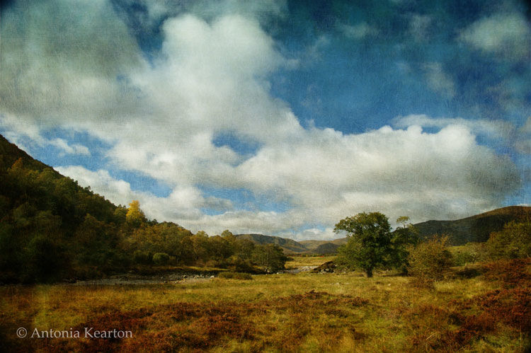 Glen Banchor, Autumn