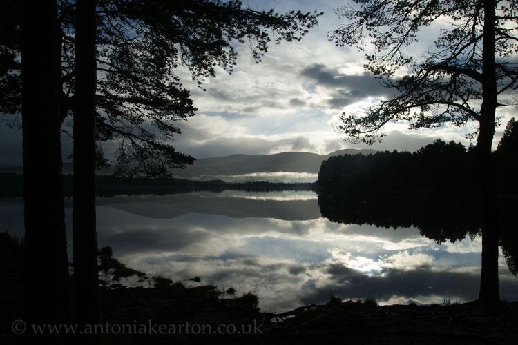 Loch Garten, November