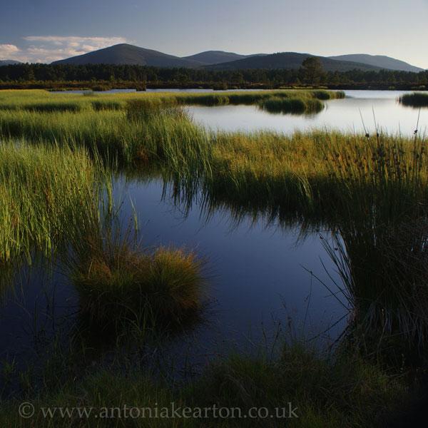 Loch an Spioraid