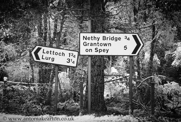 Nethy Signpost