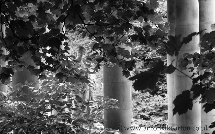 St Bernard's Well (B&W)