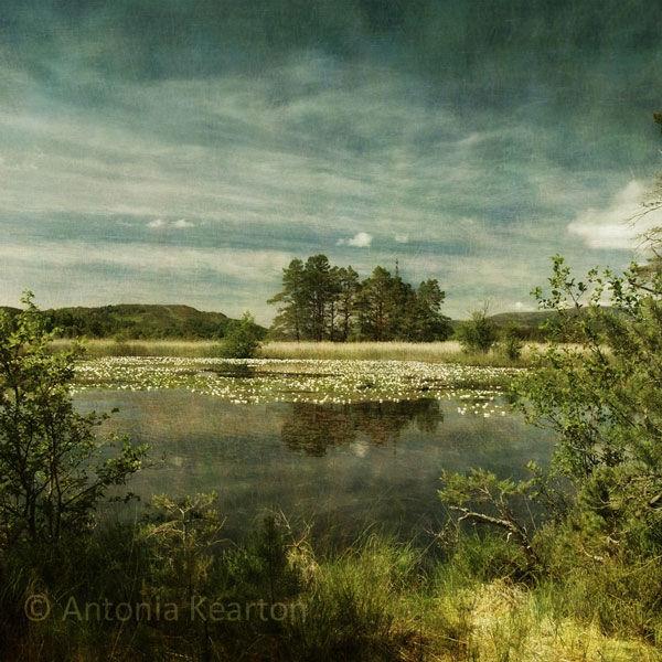 Summer, Loch Mallachie