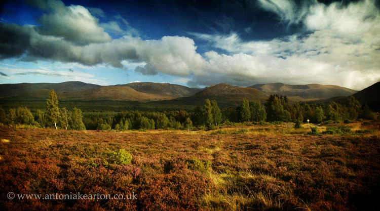 The Cairngorms from Whitewells