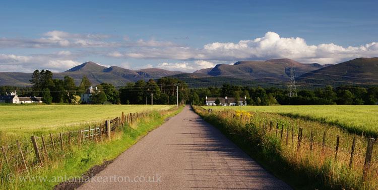 The Road to Nethy Bridge