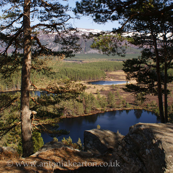 Uath Lochans and the Cairngorms