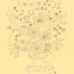 floral drawing minimal minimalist painting sketch