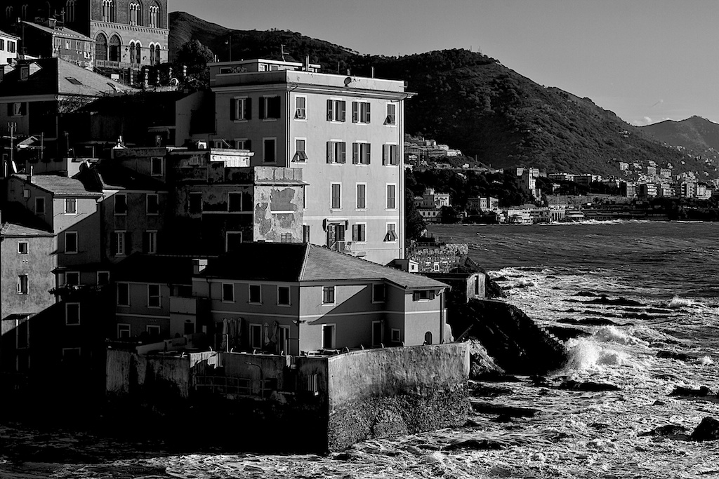 Genoa 2011 study 2